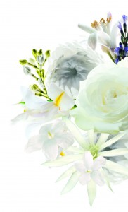 8_FLOWERS